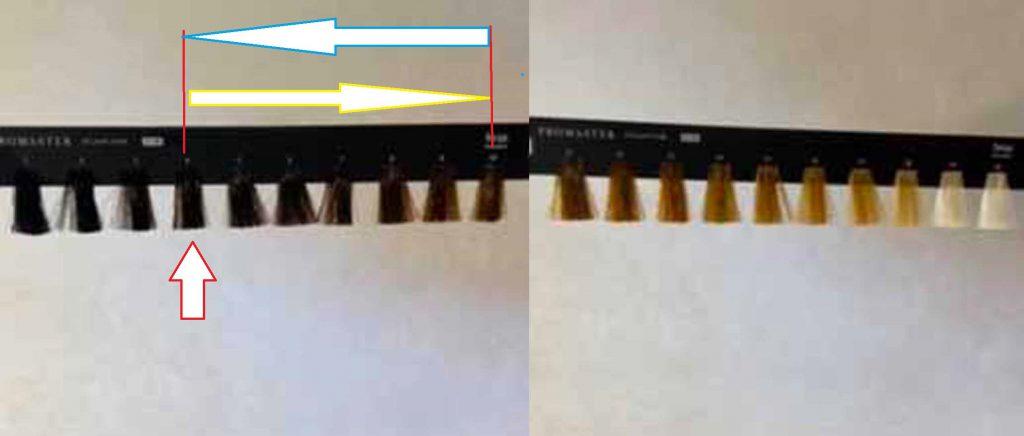 画像に alt 属性が指定されていません。ファイル名: ae46b1f460ee46f789c27b264a6cb421-4-1024x436.jpg